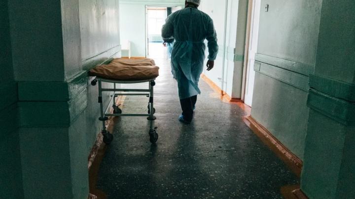 В Курганской области от COVID-19 умерли еще пять пациентов