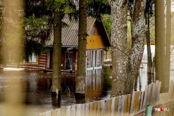В Ярославской области затоплено 422 дачных участка
