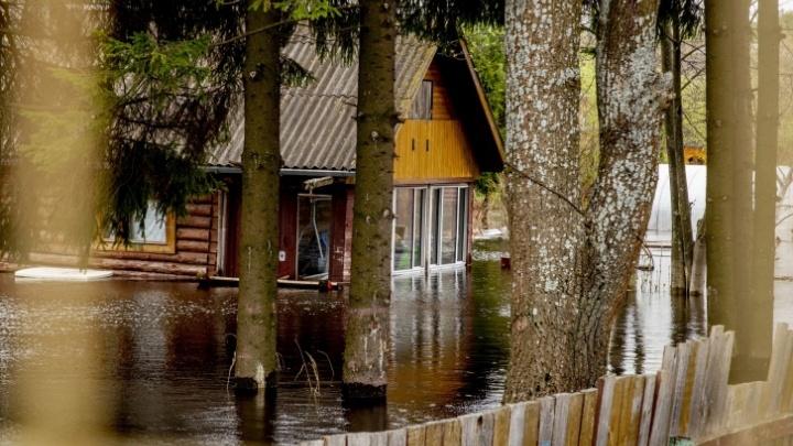 Паводок в Ярославской области: подготовили пункты размещения для 213тысяч человек