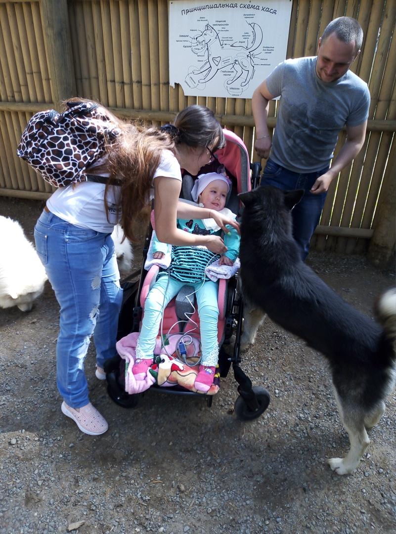 Василиса с мамой и папой в хаски-парке