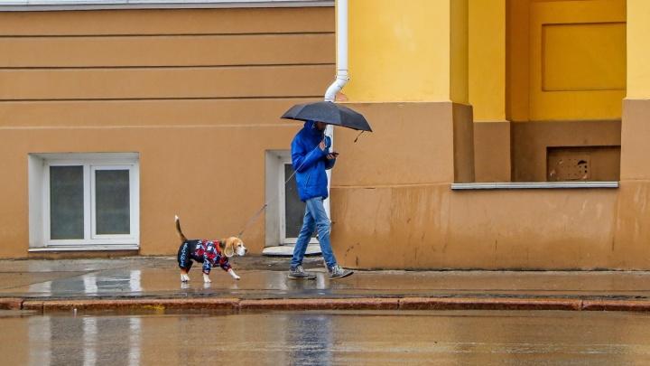 Почти как в Питере. Нижний Новгород вошел в топ-10 самых дождливых городов России