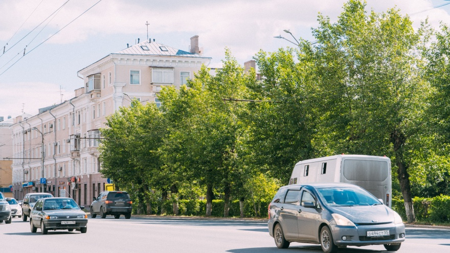Мэр Омска наложила вето на вырубку тополей на Маркса