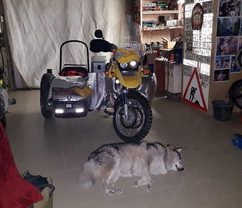 Подготовленный к путешествию мотоцикл и впечатлительный аляскинский маламут Антона Бахарева