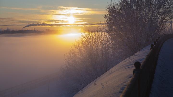 Лютый мороз — это красиво: 9 леденящих фото замерзшего Ярославля