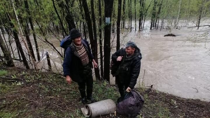 Двое мужчин отправились за черемшой и застряли в лесу на три дня из-за паводка