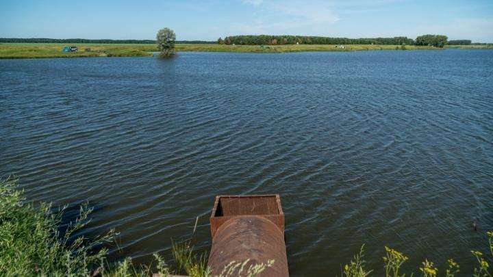 Как выглядит самая длинная речка в Новосибирске — 70 километров через поля, сёла и поселки (много фото)