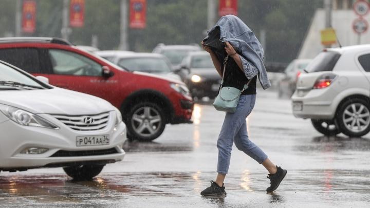 Шквалистый ветер до 23 метров в секунду: на Волгоград и область надвигается непогода