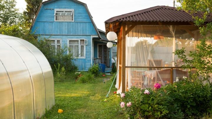 Житель Ярославской области хотел подорвать на мине свою бывшую, чтобы ухаживать за ней