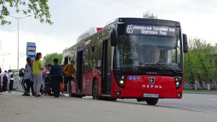 Гортранс скорректировал расписание 4 автобусов в Перми по просьбам пассажиров