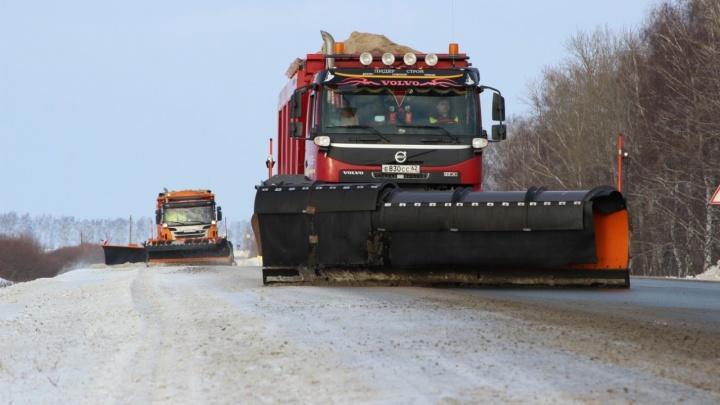 Достанется всем: дорожники предупреждают о надвигающейся на Волгоградскую область непогоде