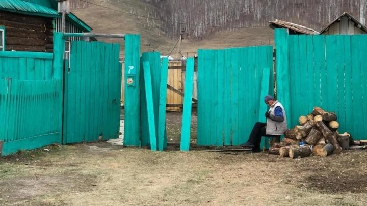 В Башкирии появилась штрафстоянка для бродячих коров и лошадей