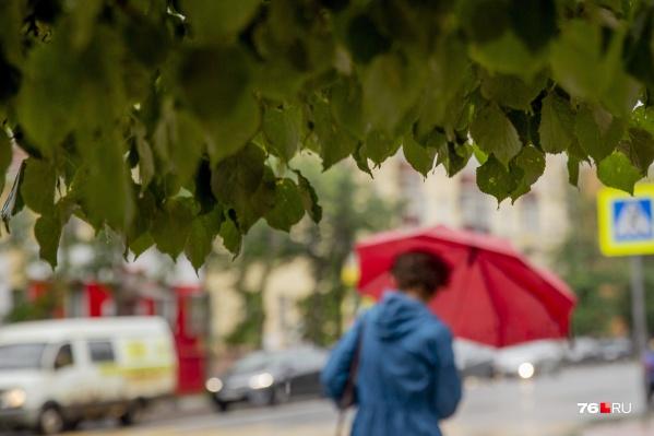 В Ярославской области в ближайшие дни ожидаются температурные качели: сначала холод, потом жара