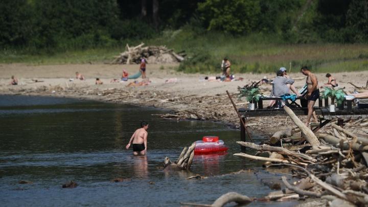 Два новосибирских пляжа будут закрыты до конца недели после аварии на канализации