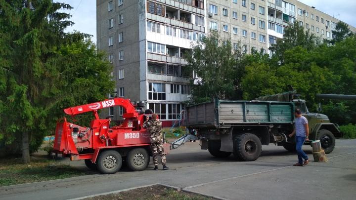 У «Дома Туриста» предложили снести 35 деревьев для строительства новой дороги