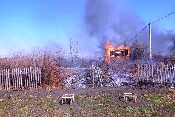 Ветер раздул угли, которые через дыры в бочке разлетелись по участку — в огне сгорели пять дачных домиков