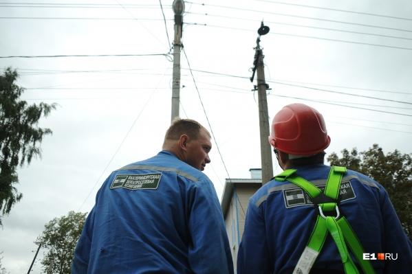Свет 14 сентября выключился из-за незаконной рубки деревьев. Два ствола упали на провода