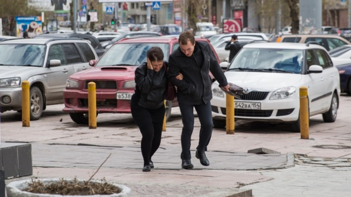 МЧС предупреждает новосибирцев о сильном ветре до 23м/с