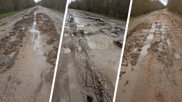 «Катафалк с покойником утонул в грязи»: из-за пучин на дороге в Ярославской области перестал ездить автобус