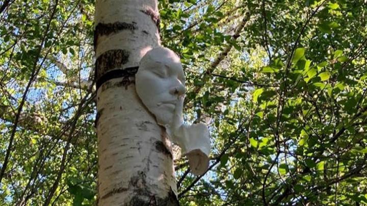 В долине реки Егошиха появились гипсовые части тела — лица, руки, стопы ног. Что это такое?