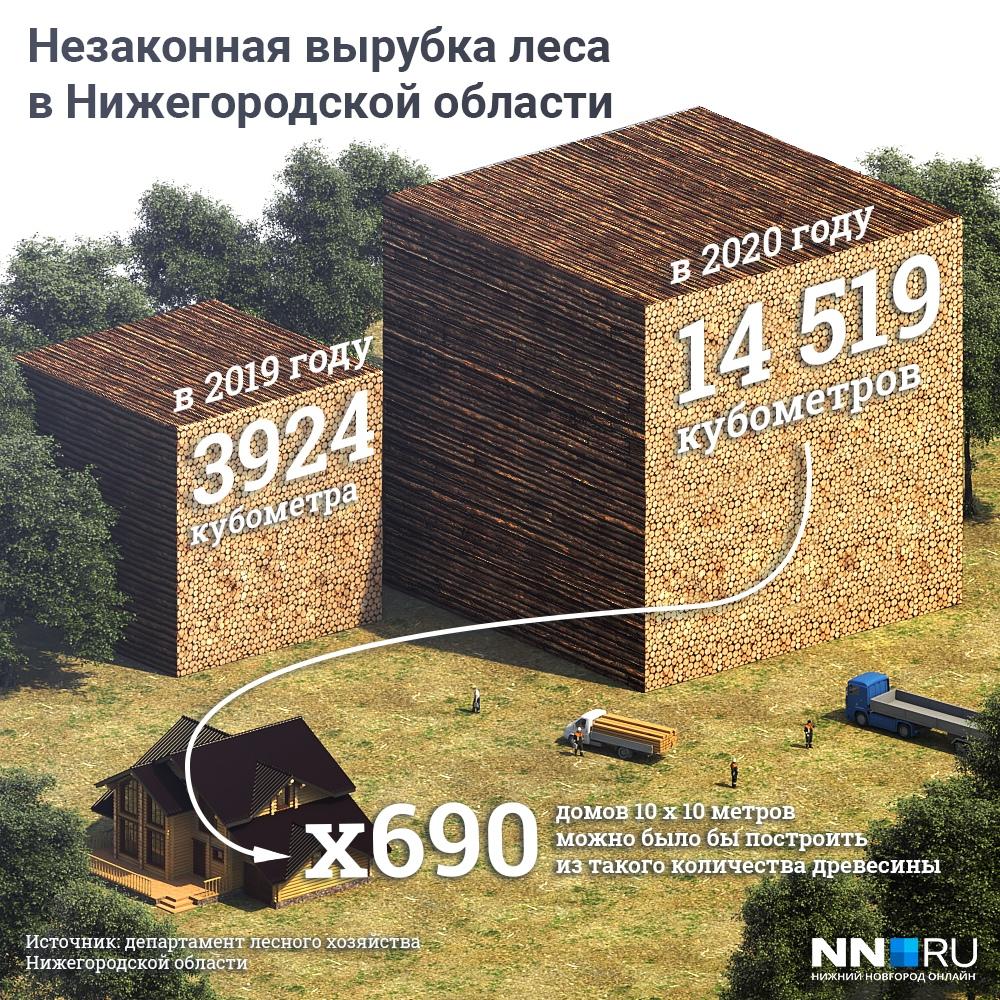 Вырубленных деревьев хватило бы на постройку 690 новых домов
