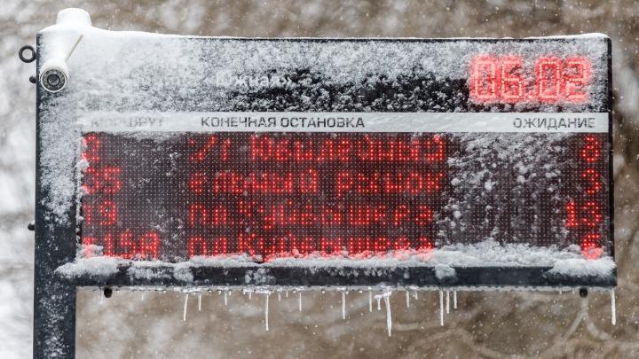Маршрутчики вошли в чат: водители общественного транспорта Волгограда стали общаться с пассажирами онлайн