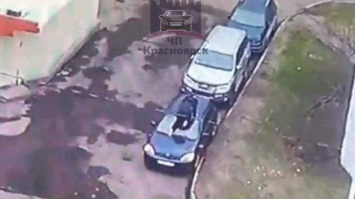 Неадекват помял крышу иномарки, припаркованной в одном из дворов на Павлова: видео