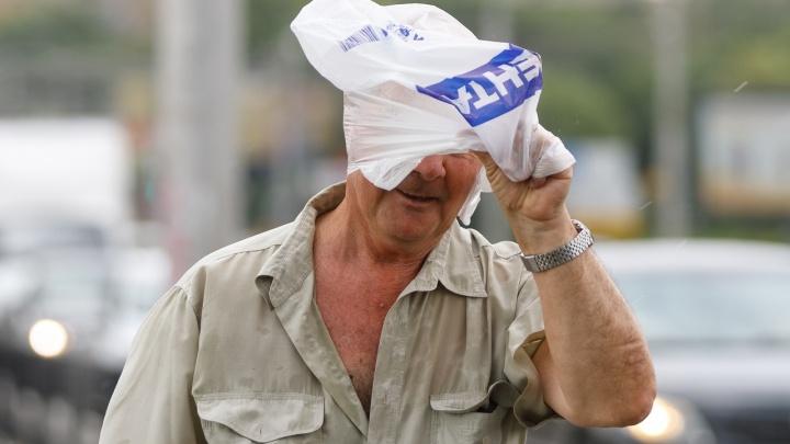 «Внимание, остались считаные минуты»: администрация предупреждает Волгоград о надвигающемся урагане