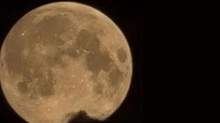 Екатеринбуржцы увидели самую большую Луну этого года