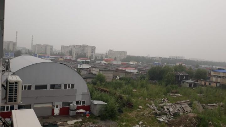 Смог, окутавший Сургут, вызван лесными пожарами