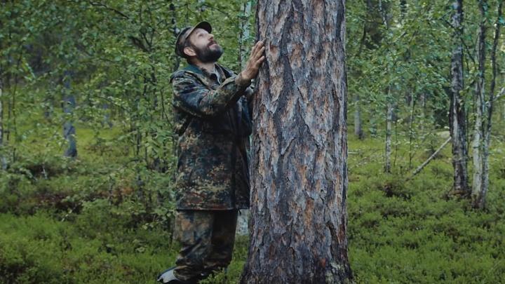 «Места, каких почти не осталось на планете»: WWF опубликовал фильм о первозданных лесах Лешуконии