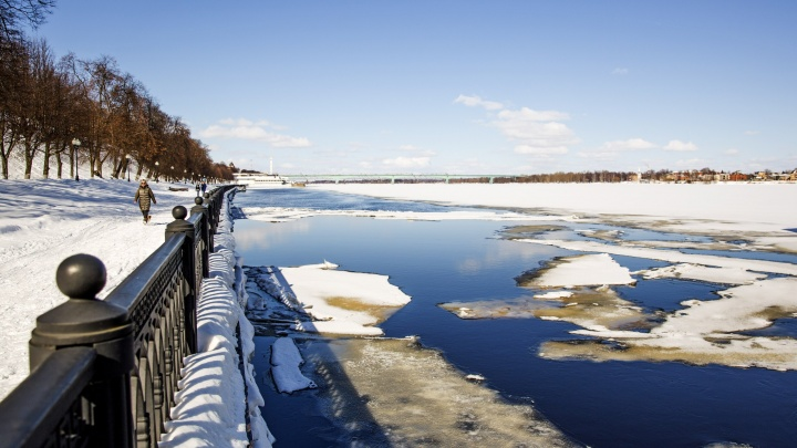Погода удивит: дали прогноз на весну и лето для Центральной России