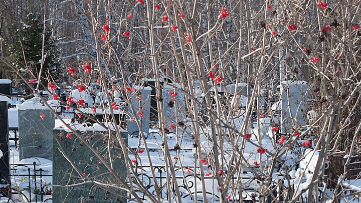 В Челябинске увеличат территорию самого востребованного кладбища