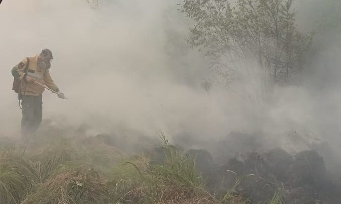 В Сургуте, Лангепасе, Когалыме и Нижневартовске в связи со смогом проверили воздух на загрязнение