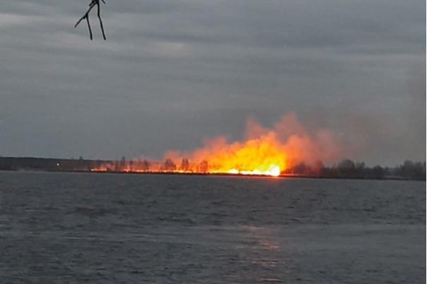 «Непонятно, где это кончается»: под Ярославлем горят поля. Туношна в огне