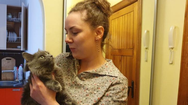 На Эльмаше зоозащитники спасли умиравшую в запертой квартире кошку