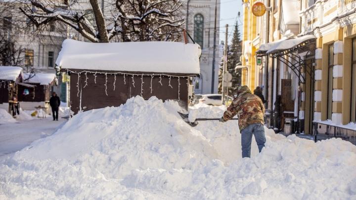 Мэрия Ярославля объявила субботник в 25-градусный мороз: чиновники взмолились