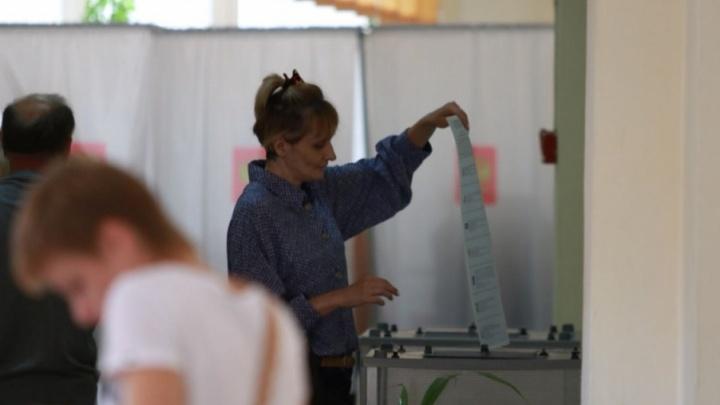 Жителям Ростовской области предложат голосовать, не выходя из «Госуслуг»