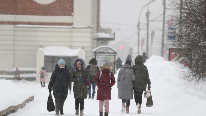 В Новосибирск идут метели — МЧС выпустило экстренное предупреждение