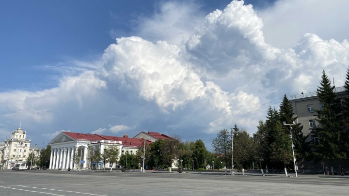 «Будет теплым и сухим»: народный синоптик Илья Винштейн сделал прогноз погоды на август в Кургане
