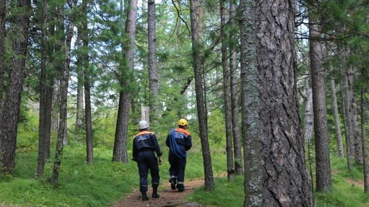Две любительницы прогулок заблудились в парке «Гремячая грива». Спасатели их искали до часа ночи