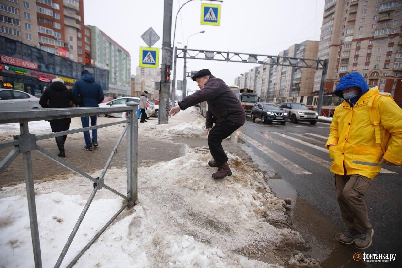 автор Сергей Михайличенко / «Фонтанка.ру»