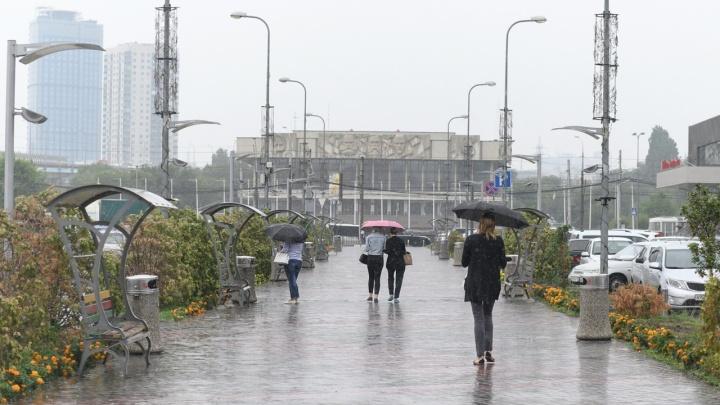 Сыро, зябко и дождливо: волгоградцев предупредили о резком похолодании