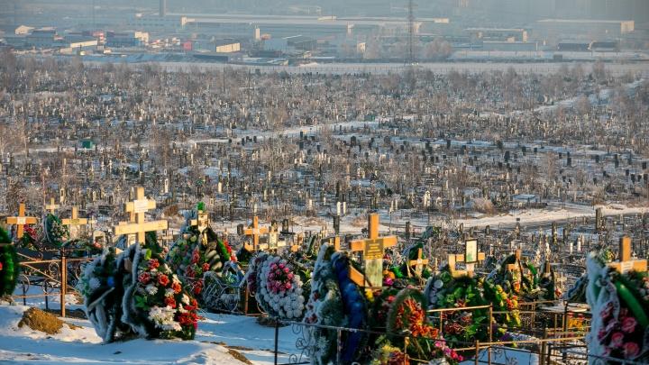 Стало известно место расположения нового красноярского кладбища