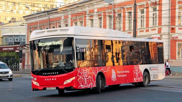 В дни выборов в Перми часть автобусов пустят по расписанию буднего дня. Часть — изменит маршрут