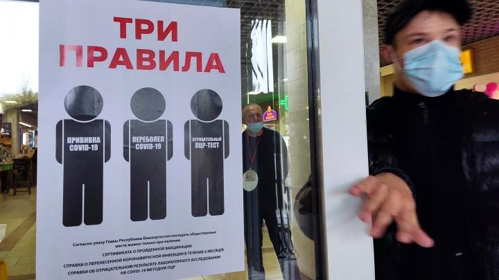 Рост коронавируса, ветшающий цирк и смерть чиновницы: итоги недели в Башкирии