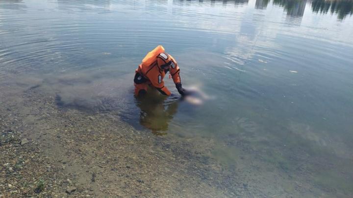 В Уфе на озере Кашкадан обнаружили тело мужчины