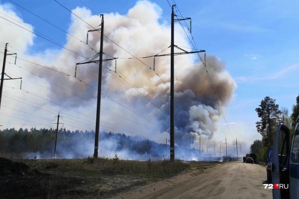Пожар раскинулся на 15 квадратных километров