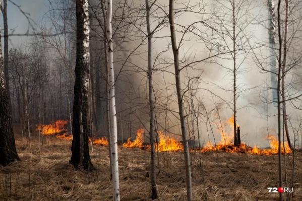 Пожарами охвачены сотни гектаров в Тюменской области