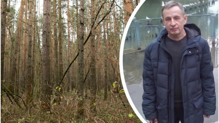 В Ярославской области спустя месяц нашли тело пропавшего грибника