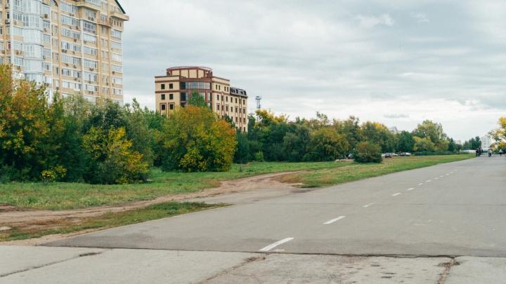 В омской мэрии прокомментировали вырубку 24 деревьев для строительства отеля